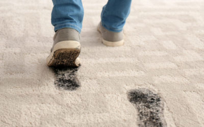 How to Make your Carpet Last
